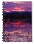 Bosque Sunset - Purple Spiral Notebook