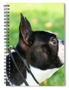 Boston Profile Spiral Notebook