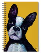 Boston Terrier On Yellow Spiral Notebook