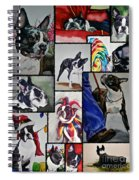 Boston Terrier Watercolor Collage Spiral Notebook