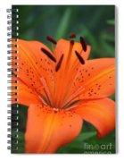 Botanical Beauty 1 Spiral Notebook