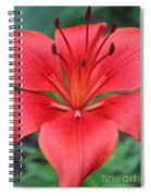Botanical Beauty 2 Spiral Notebook