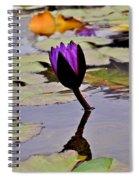 Botanical Garden Lotus Flowers Spiral Notebook