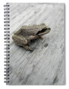 Botanical Gardens Tree Frog Spiral Notebook