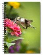 Botanical Hummingbird Spiral Notebook