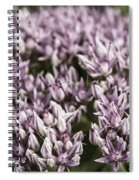 Botanical Stars Spiral Notebook
