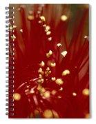 bottle brush Australia 2 Spiral Notebook