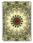 Bottle Brush Kaleidoscope Spiral Notebook