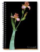 Bottle Of Curiosity With Iris Spiral Notebook