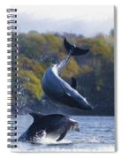 Bottleneck Dolphin Playing Spiral Notebook