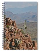 Bottom Of The Sierra Ancha Forest Spiral Notebook
