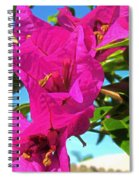 Bougainvillea Beauty Spiral Notebook