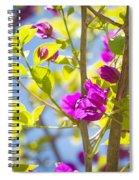 Bougainvillea Spiral Notebook