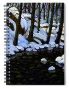 Boulder Brook In Winter Spiral Notebook