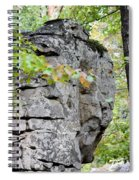 Boulder Field In October 2012 Spiral Notebook
