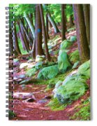 Boulder Forest Spiral Notebook