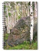 Boulder Outside Boulder Spiral Notebook