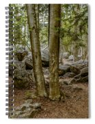 Boulder Woods Spiral Notebook