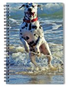 Bounding Happiness Spiral Notebook