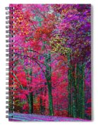 Bountiful Color Spiral Notebook