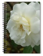 Bountiful White Rose... Spiral Notebook