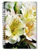 Bouquet Of Alstroemeria Spiral Notebook