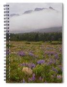 Bouquet Of Glacier Spiral Notebook