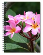 Bouquet Of Pink Plumeria Spiral Notebook