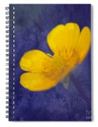 Bouton D Or - Tb01c Spiral Notebook