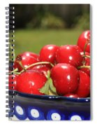 Bowl Of Cherries In The Garden Spiral Notebook