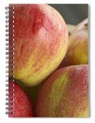 Bowl Of Royal Gala Apples Spiral Notebook