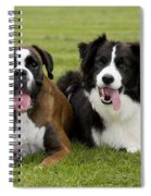 Boxer And Border Collie Spiral Notebook