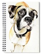 Boxer Dog Poster Spiral Notebook