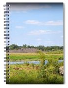 Boylan Marsh Spiral Notebook