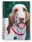 Bracco Italiano  Spiral Notebook