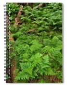 Bracken Spiral Notebook