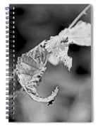 Bramble Leaves - Black And White Spiral Notebook