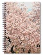 Branch Brook Cherry Blossoms Iv Spiral Notebook