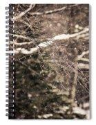Branch In Forest In Winter Spiral Notebook