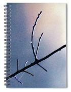 Branch  Web And Dew Spiral Notebook