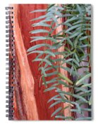 Branches And Bark Spiral Notebook