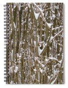 Branches And Twigs Covered In Fresh Snow Spiral Notebook