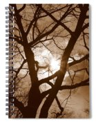 Branches In The Dark 2 Spiral Notebook