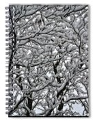 Branches Of Our Life Spiral Notebook