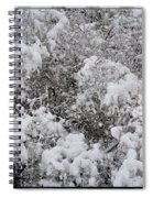 Branches Of Snow Spiral Notebook