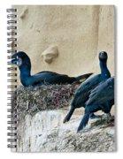 Brandts Cormorant Nesting On Cliff Spiral Notebook