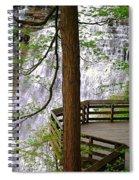 Brandywine Falls Spiral Notebook
