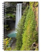 Brandywine Through The Trees Spiral Notebook