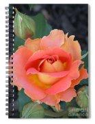 Brass Band Rose Spiral Notebook