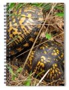 Breeding Box Turtles Spiral Notebook
